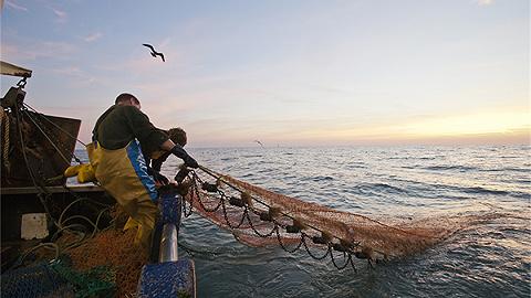 中国正式实施公海自主休渔,能否成长效举措尚待评估