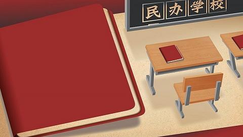 杨东平:如果民办学校以上市为追求,那它是办企业,而非办教育
