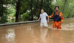 直通部委 | 8月南方多条河流可能发生暴雨洪水 我国藏羚羊种群数量增至约30万只