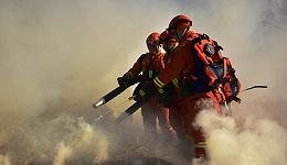 直通部委|两部门:面向退役士兵招录消防员 林草局:亚洲象种群数量上升到300头左右