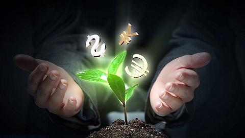 粤港澳大湾区绿色金融如何协调发展?三地监管部门高层这样说