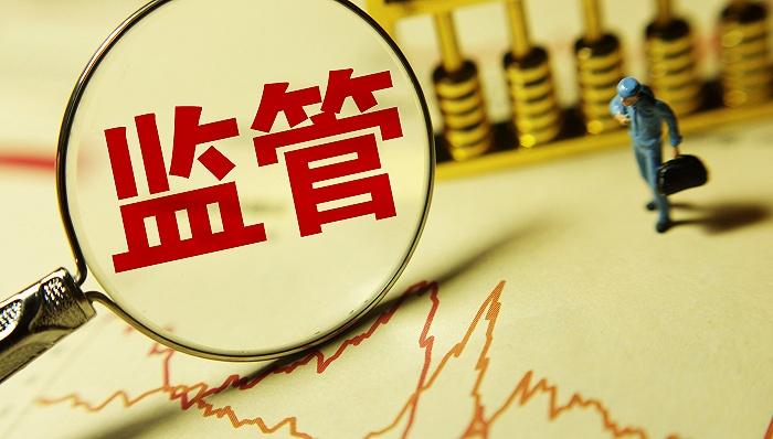 凤凰城代理注册易纲:大型金融科技公司
