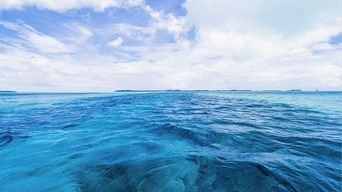 山东检察机关开展专项监督助力海洋强省建设