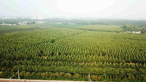 东莞市生态环境部门将对企业闲置大气污染防治设施实施顶格处理