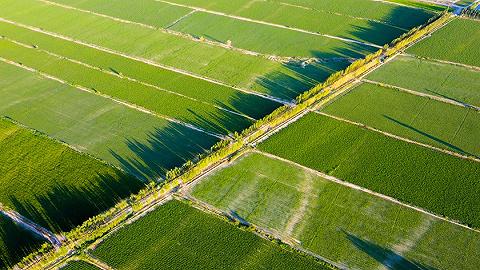"""山东首批""""两全两高""""农业机械化示范县名单公示,37个县入选"""