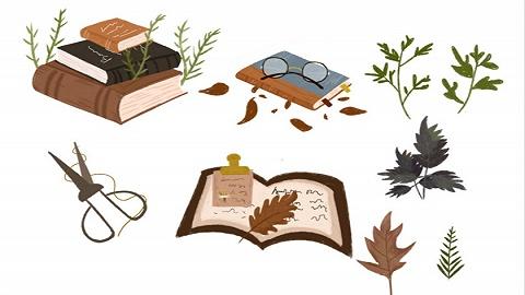 天津新蕾出版社《中国儿童文学史(插图本)》获专家点赞