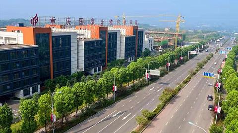生物医药产业升级,重庆高新区如何抓住机遇?