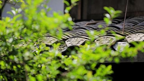 四川消防发布清明节消防安全八提示,提倡文明祭扫寄哀思