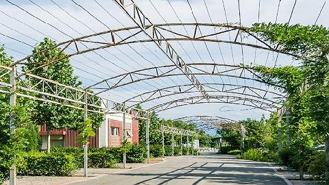 海南农垦胡椒绿色环保加工厂落户东昌,每年可加工鲜胡椒2万吨以上