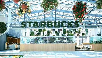 2020仍在疯狂开新店的星巴克,又带来了哪些好的店铺设计?