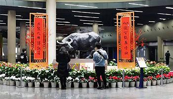 """九旬画家汪观清牛年塑牛,雕出中国人的""""牛气精神"""""""