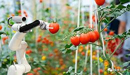 解析新加坡农业食品系统:将土地利用到极致,将创新贯彻到极致