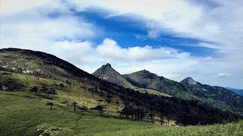 保护大美秦岭 守护绿水青山,第八个秦岭生态环境保护宣传周来了