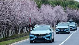 押注岚图,东风自主品牌的关键一搏能成吗?