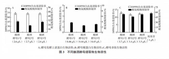 应用超过40年,酵母成分如何成为后生元护肤代表?