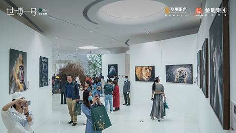 世博一号 树影艺术中心开放×实景示范区正式开放