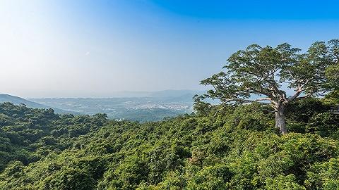 """海南热带雨林国家公园""""身价""""出炉"""