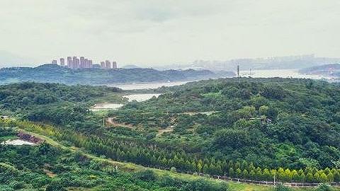 """广阳湾智慧生态城最新规划来了:打造巴渝版现代""""富春山居图"""""""